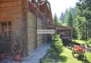 Гостиница «Грунок» Пилипец, Закарпатье.