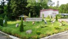 Санаторий «Зеленый гай» Дрогобыч