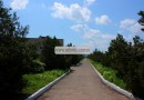 База отдыха «Звездочка» Грибовка